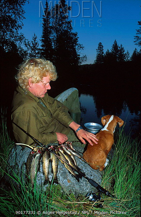 Fisherman with dog at lake in evening Trout fishing Norway  -  Asgeir Helgestad/ npl