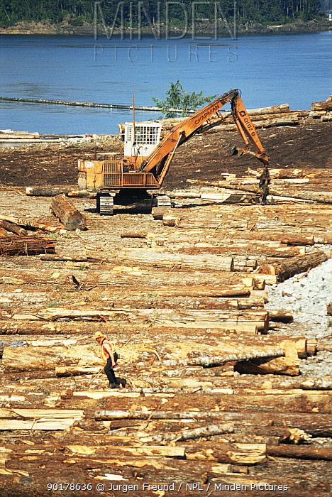 Wood processing industry, Vancouver Island, British Columbia, Canada  -  Jurgen Freund/ npl