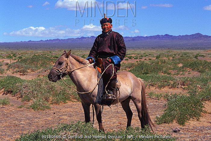 Man on horseback, in traditional clothing, Gobi Desert, Mongolia  -  Gertrud & Helmut Denzau/ npl