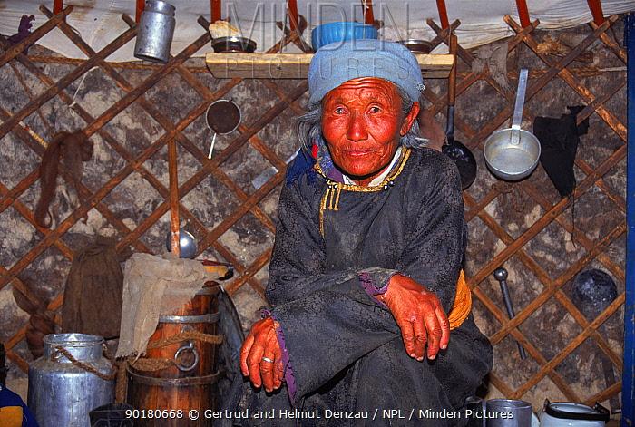 Elderly women sitting inside yurt (tent), Gobi Desert, Mongolia  -  Gertrud & Helmut Denzau/ npl