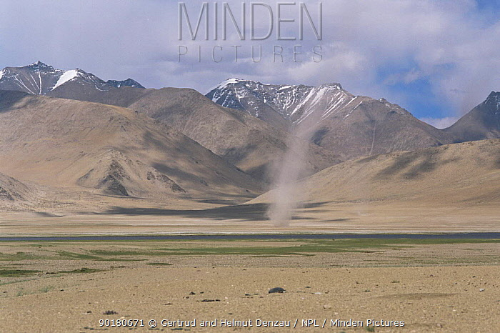 Dust tornado touches down on Tibetan Plateau landscape, Ladakh, North East India  -  Dr. Gertrud Neumann-denzau/ npl