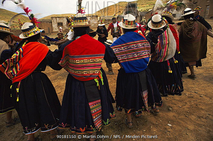 Quechua people dance at traditional wedding ceremony, Bolivia  -  Martin Dohrn/ npl