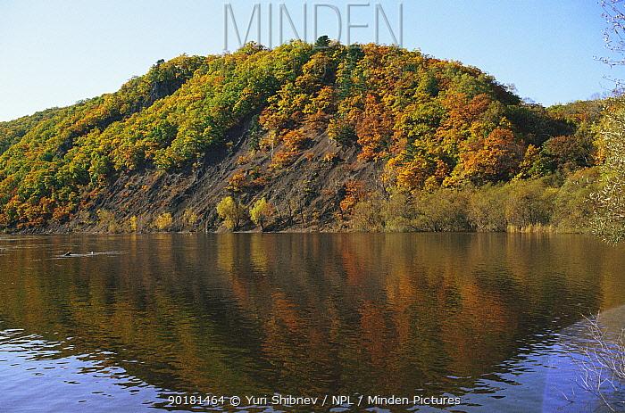 Autumn woodland along Birkin river, Primorskiy region, Ussuriland, Russia  -  Yuri Shibnev/ npl