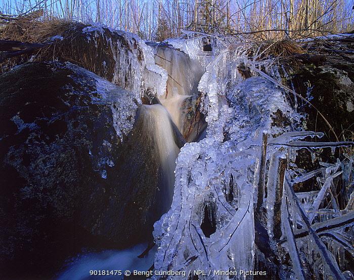 Frozen waterfall in stream, Varmland, Sweden  -  Bengt Lundberg/ npl