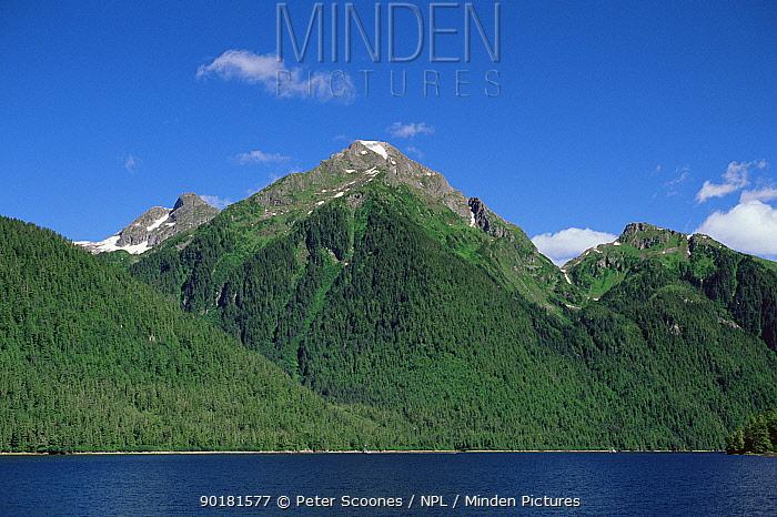 Coastal habitat, wooded mountains, Alaska, USA  -  Peter Scoones/ npl