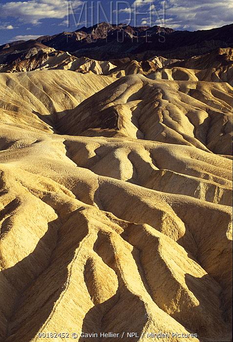 View from Zabriskie Point in Death Valley NP, California, USA  -  Gavin Hellier/ npl