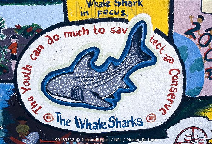 Conservation sign at Whale shark festival, Donsol, Philippines 2002  -  Jurgen Freund/ npl