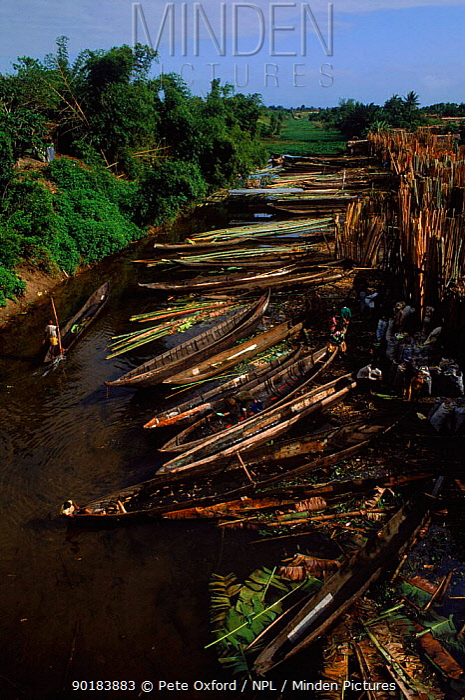 Canoes outside wood market Tamatave Madagascar  -  Pete Oxford/ npl