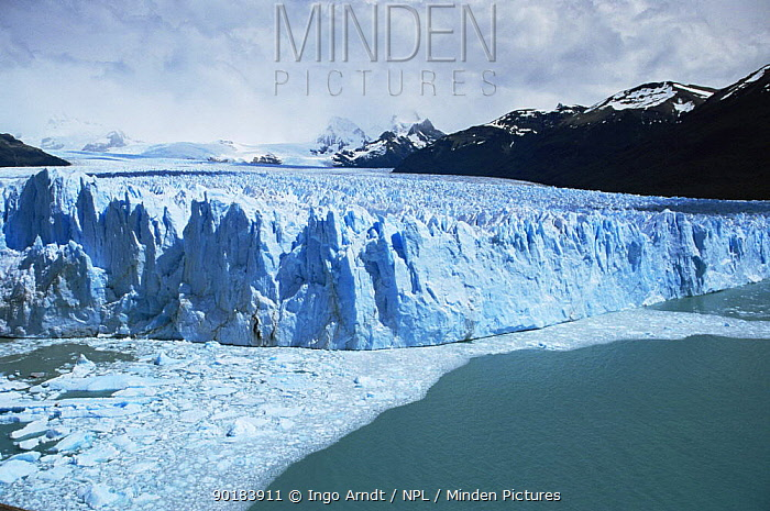 Coastal edge of Perito Moreno glacier, Patagonia, Argentina 2002  -  Ingo Arndt/ npl
