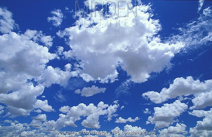 Looking up at clouds in sky, Northern Territories, Australia  -  David Noton/ npl