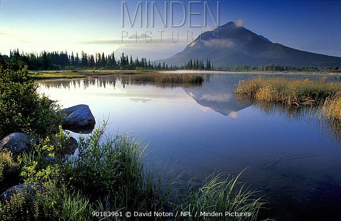 View over Vermillion Lake towards Mount Rundle, Banff NP, Alberta, Canada, North America  -  David Noton/ npl