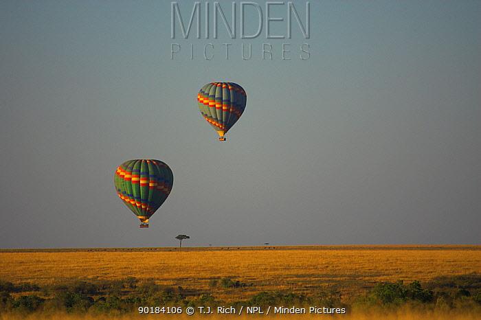 Hot air balloons over the Masai Mara National Reserve, Kenya  -  T.J. Rich/ npl