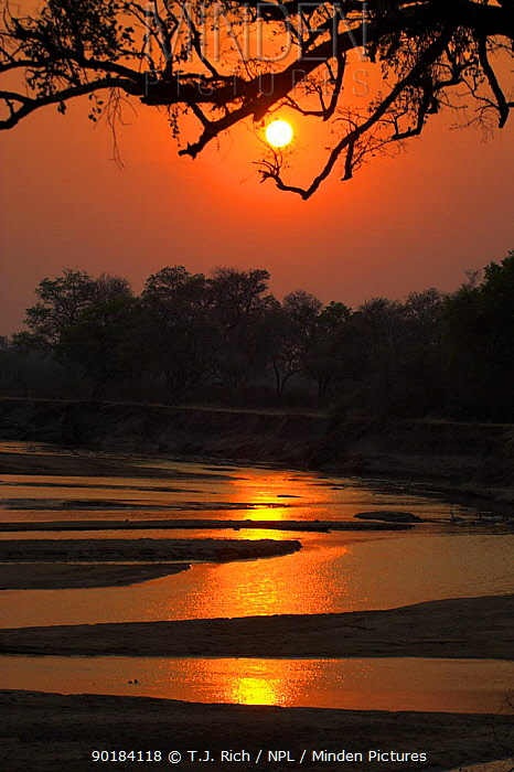 Sunset over the Luangwa river, South Luangwa National park, Zambia  -  T.J. Rich/ npl