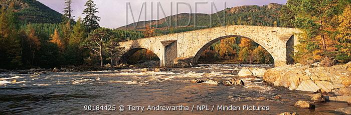 Panoramic view of Bridge of Dee over the River Dee in autumn, Braemar, Grampian Mountains, Scotland, UK  -  Terry Andrewartha/ npl