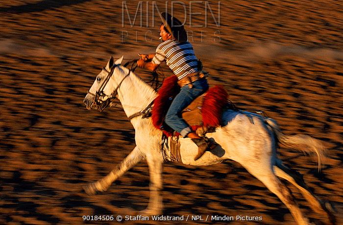 Cowboy, Vaqueiro galloping on horseback, Pantanal, Brazil  -  Staffan Widstrand/ npl
