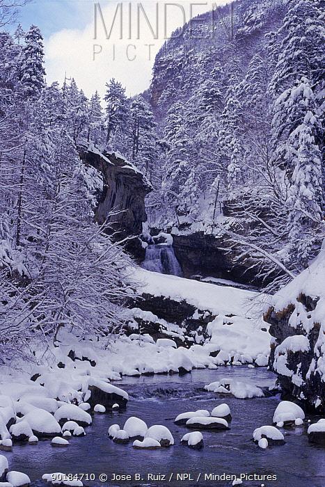 Ordesa river, Ordesa NP, Pyrenees, Spain, Europe  -  Jose B. Ruiz/ npl