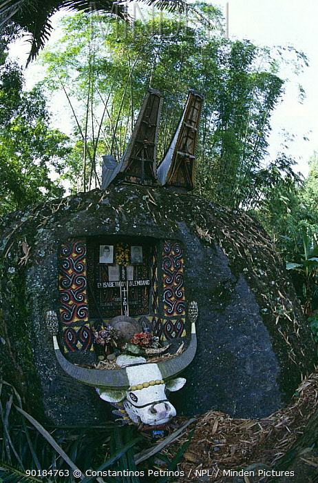 Grave with offerings, Tana Toraja, Central Sulawesi, Indonesia  -  Constantinos Petrinos/ npl