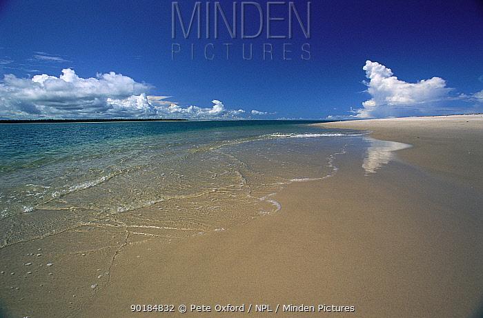 Brazilian beach, Atlantic coast, Bahia, Brazil  -  Pete Oxford/ npl