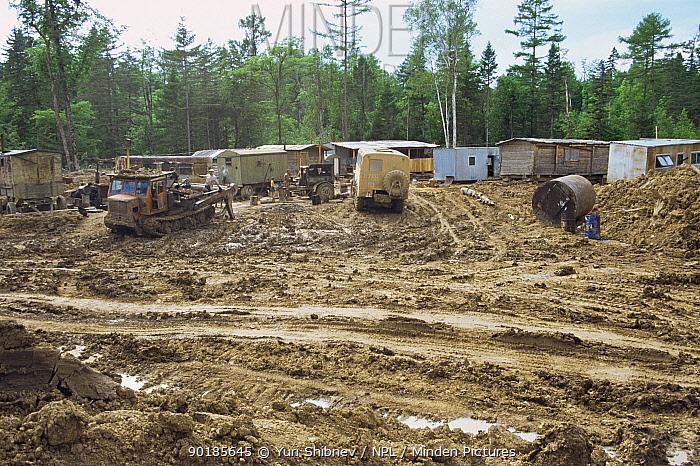 Disruption and deforestation at logging camp in Ussuri Forest, Primorskiy Region, Far East Russia  -  Yuri Shibnev/ npl