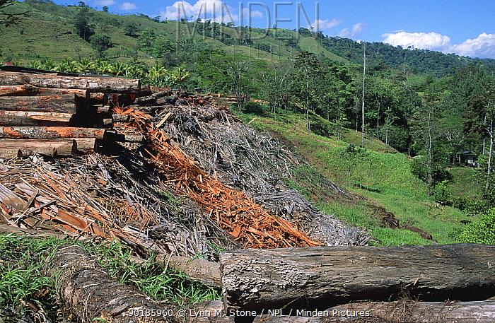 Tropical rainforest deforestation with cut logs, timber, Costa Rica  -  Lynn M. Stone/ npl