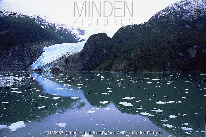 Garibaldi fjord with glacier, Beagle Channel, Chile  -  Hanne & Jens Eriksen/ npl