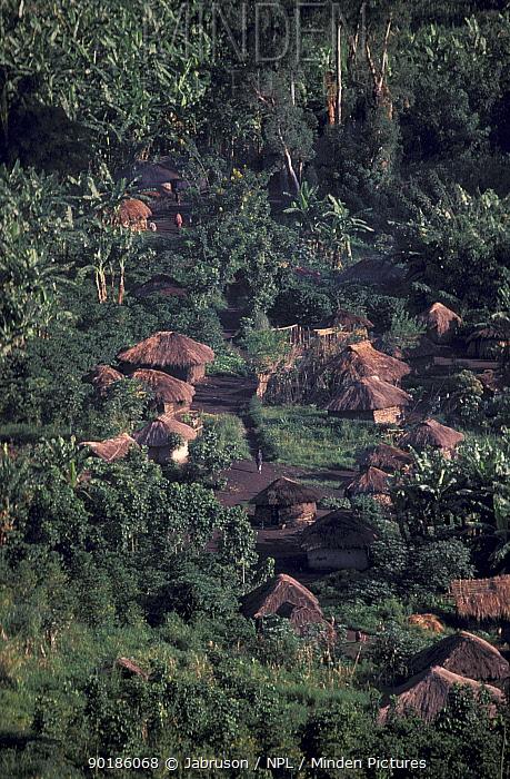 Tongo village and banana crops Virunga NP Dem Rep Congo  -  Jabruson/ npl