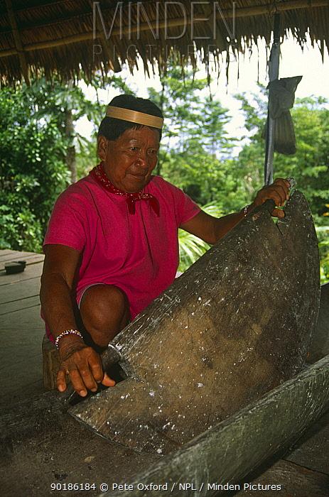 Secoya Indian shaman grinding maize, Rio Agua Rico, Ecuadorian Amazon, 1994  -  Pete Oxford/ npl