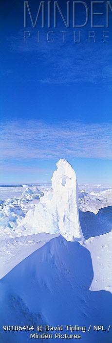 Ice sculpture on sea ice, Weddell Sea, Antarctica  -  David Tipling/ npl