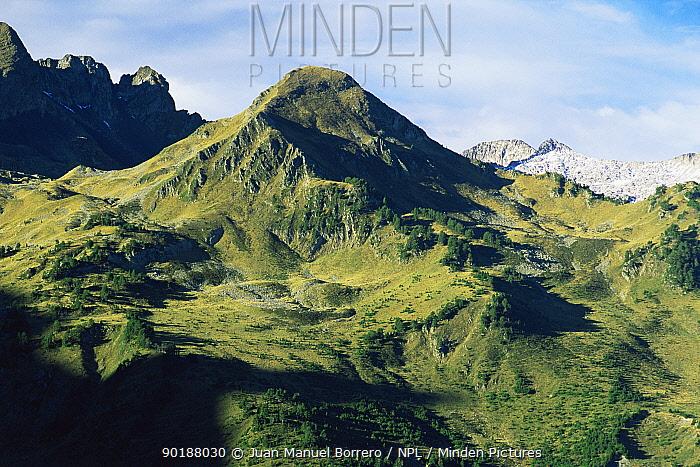 Arran valley, Pyrenees, Catalonia, Spain  -  Juan Manuel Borrero/ npl