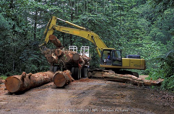 Logging activity, Danum valley concession, Sabah, Borneo, Malaysia  -  Nick Garbutt/ npl