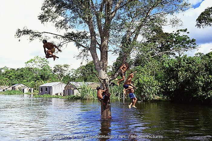 Children play jumping into flooded Amazon river, Amazonas, Brazil 1993  -  Luiz Claudio Marigo/ npl