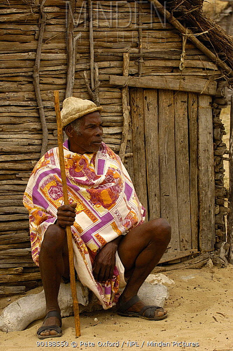 Antandroy man wearing hat made from the pith of cactus pads, sitting outside traditional house made from Didiereacaea plants Spiny forests of Southern Madagascar 2005  -  Pete Oxford/ npl