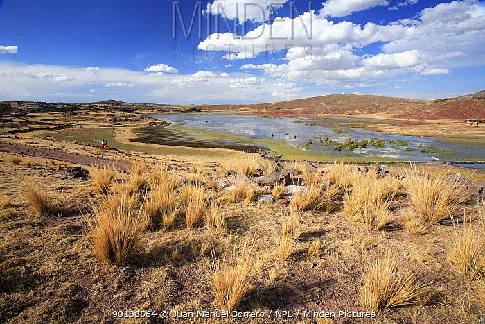 Umayo lake, Puno, Peru  -  Juan Manuel Borrero/ npl