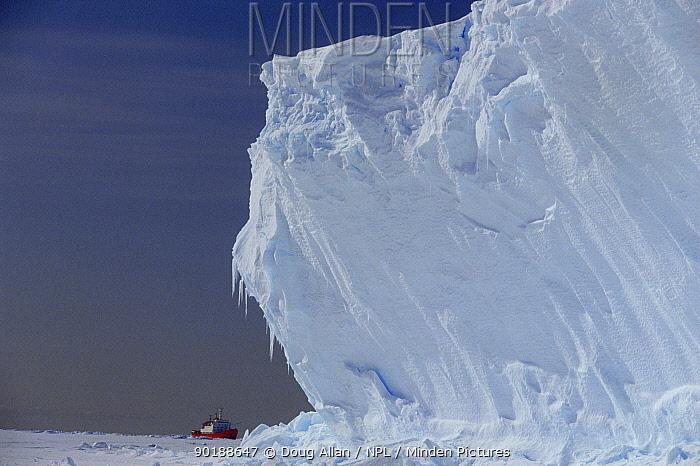 Icebreaker RRS Bransfield moored near Brunt Ice Shelf cliffs (30m high), Antarctica  -  Doug Allan/ npl