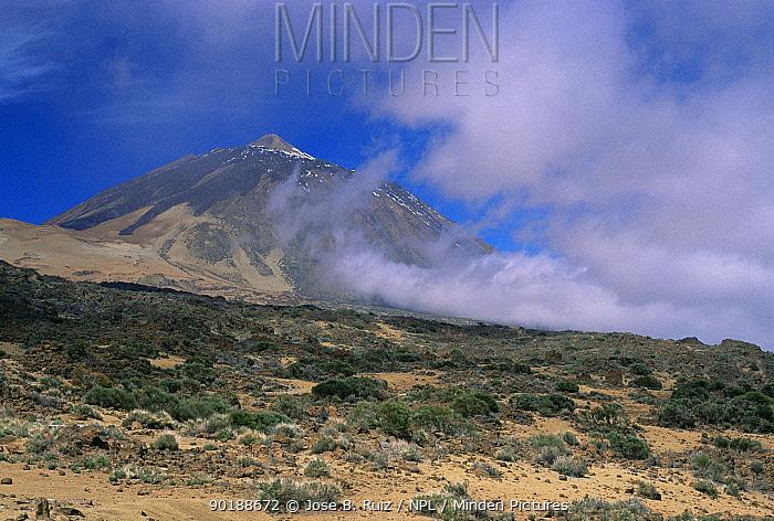Las Canadas, Teide Volcano NP, Tenerife, Canary Islands  -  Jose B. Ruiz/ npl