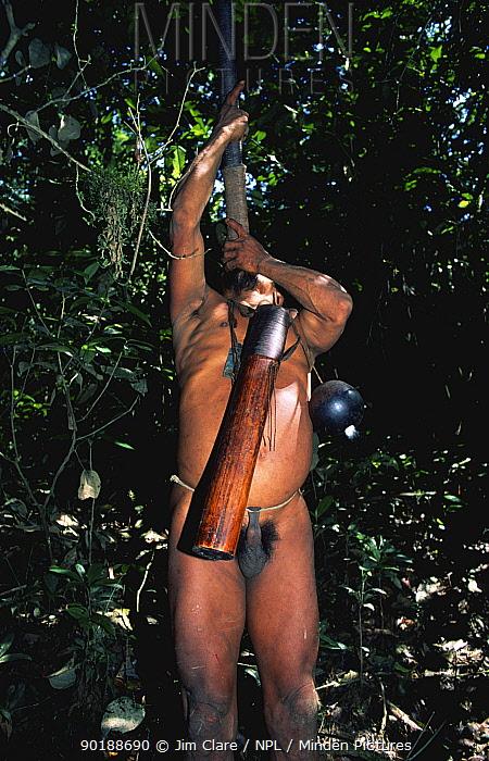 Huaorani indians hunting with blow pipe and curare, Yasuni NP, Ecuador  -  Jim Clare/ npl