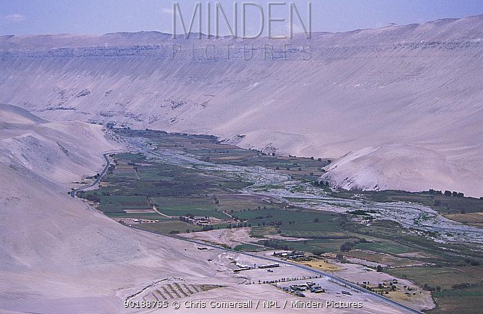 Azapa valley, northern Chile Fertile plains meet the Atacama desert  -  Chris Gomersall/ npl