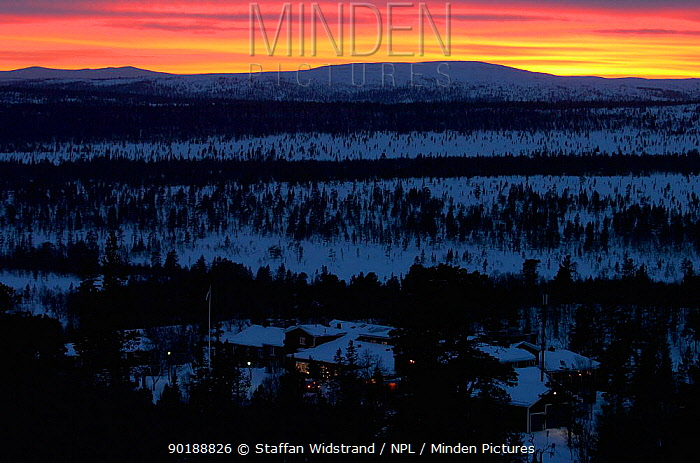 Arctic light in the evening, Grovelsjon NR, Dalarna, Sweden  -  Staffan Widstrand/ npl