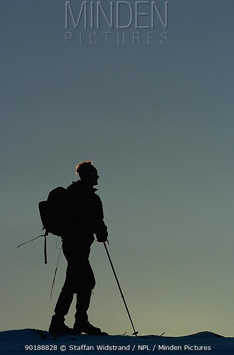 Cross country skiing ecotourism, Grovelsjon NR, Dalarna, Sweden  -  Staffan Widstrand/ npl
