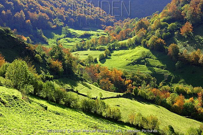 Pig?e?a valley, Somiedo NP Asturias, Spain  -  Juan Manuel Borrero/ npl