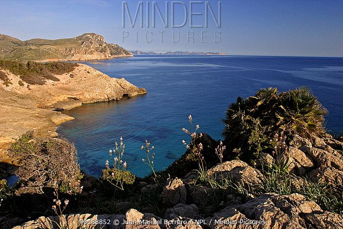 Cap de Ferrutx coast Majorca, Balearic Is, Spain  -  Juan Manuel Borrero/ npl