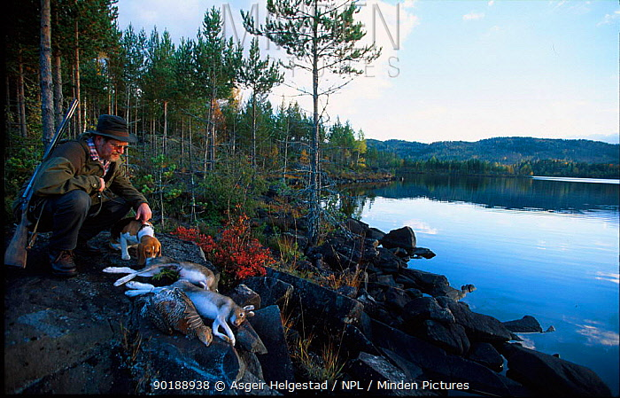 Hunter with dead Capercaillie and Hare Vatnebrynvannet lake, Norway  -  Asgeir Helgestad/ npl