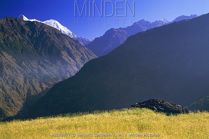 Langtang ridge (2500metres) with Barley field in foreground Langtang NP, Nepal  -  Bernard Castelein/ npl