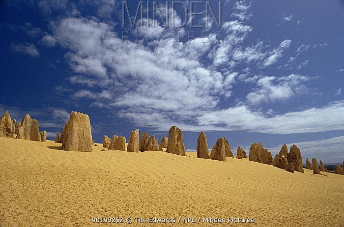 Pinnacle Desert, Namburg National Park, Western Australia  -  Tim Edwards/ npl