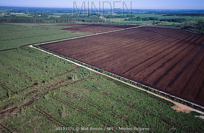 Peat bog being prepared for drainage and mining Tartumaa Estonia  -  Niall Benvie/ npl