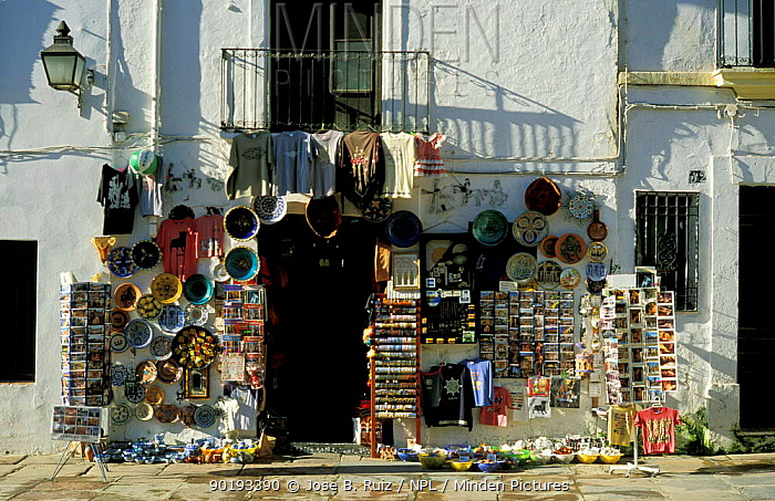 Souvenir shop, Plaza del Potro, Cordoba, Andalucia, Spain  -  Jose B. Ruiz/ npl
