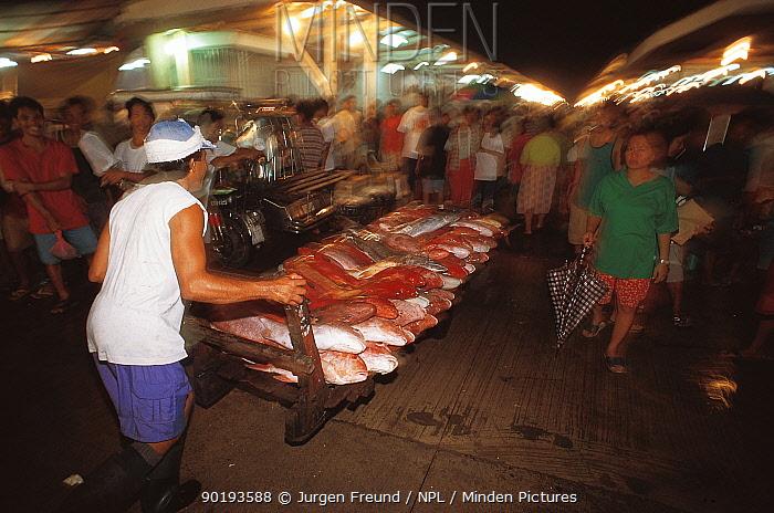 Fish market, Manila, Philippines  -  Jurgen Freund/ npl