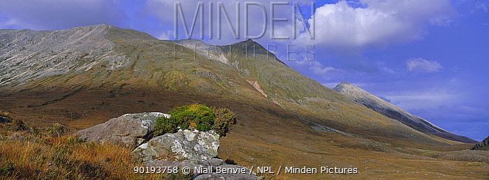 Beinn Eighe ridge from Liatach side, Beinn Eighe NNR, Wester Ross, Scotland, UK  -  Niall Benvie/ npl