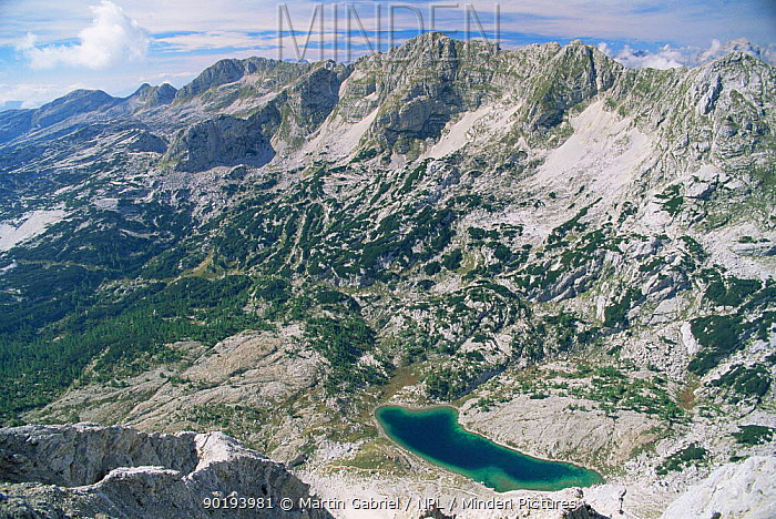 Looking down on green lake in the mountains of Valley of the Seven Lakes, Triglav NP, Slovenia  -  Martin Gabriel/ npl