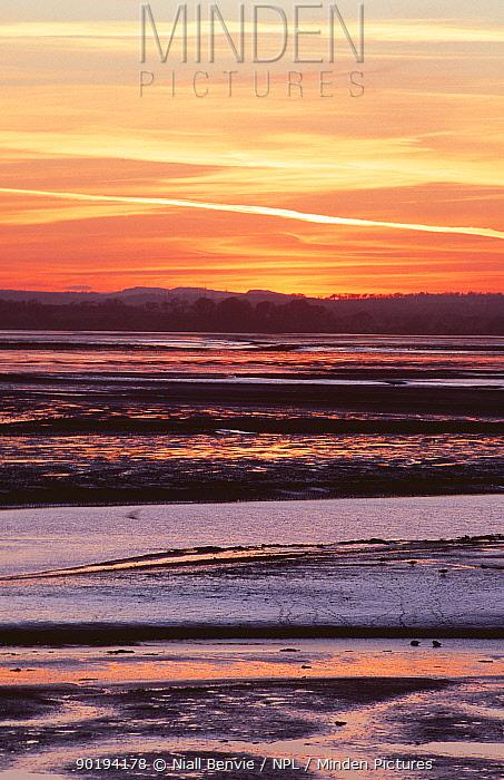 Tidal mudflats, Montrose, Angus, Scotland, UK  -  Niall Benvie/ npl